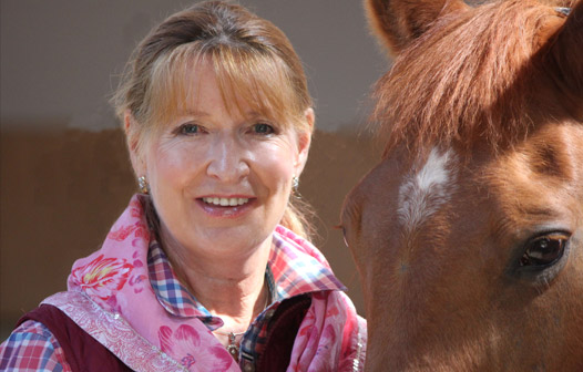 Horse healing and animal healing margrit coates